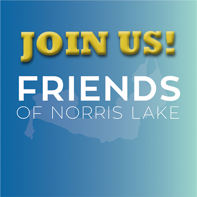Join the Friends of Norris Lake